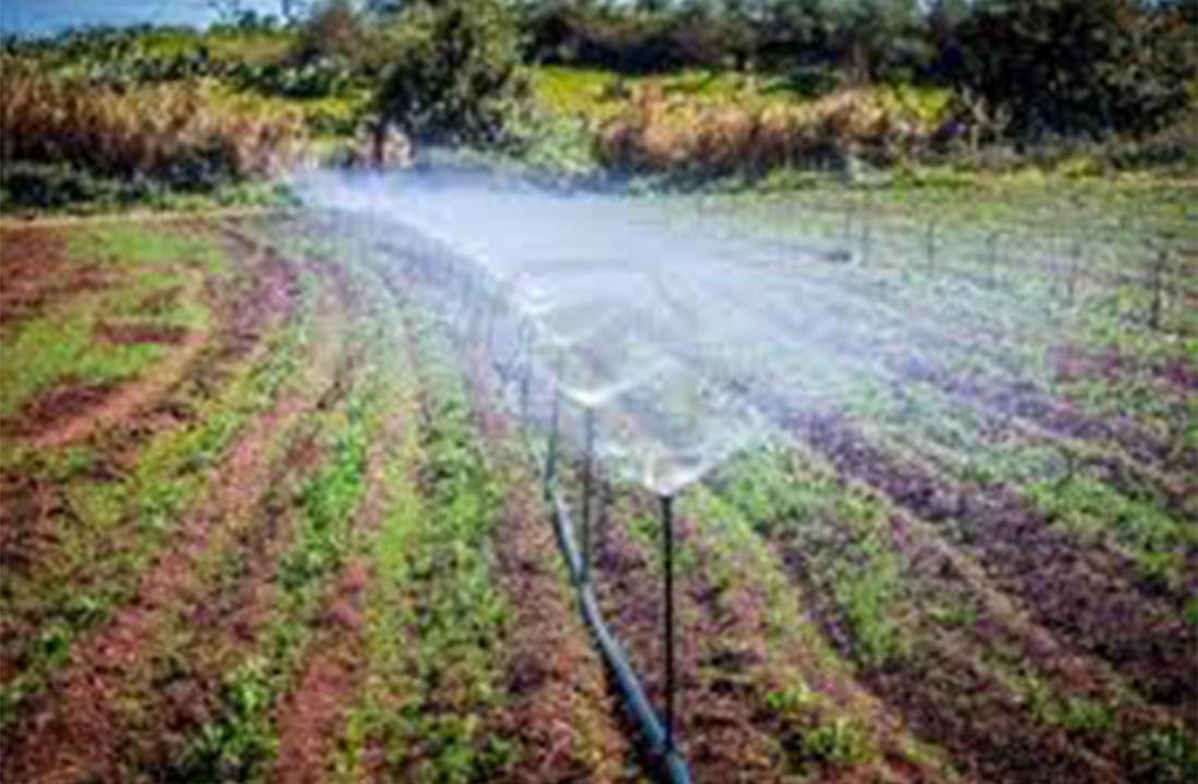 Irrigation farm